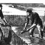 La acuicultura
